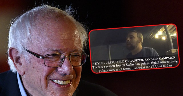 Project Veritas: Bernie Sanders Field Organizer Suggests Gulags to Help 'Nazified' Trump Voters