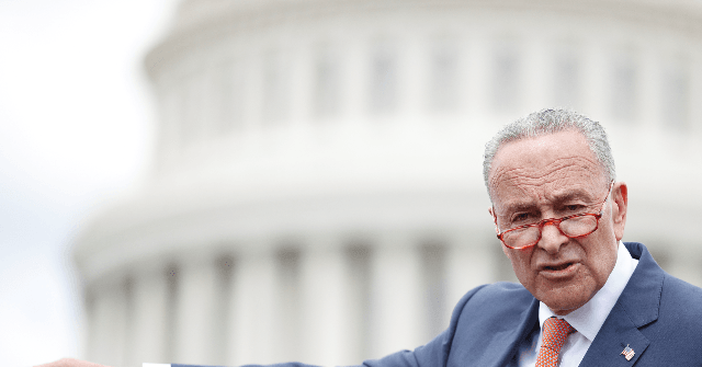 Schumer: If Trump Commits High Crimes 'In Three Months, They Should Impeach Him Again'