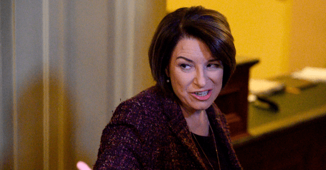 Peter Schweizer: Amy Klobuchar 'Not Nearly as Moderate as She Claims'