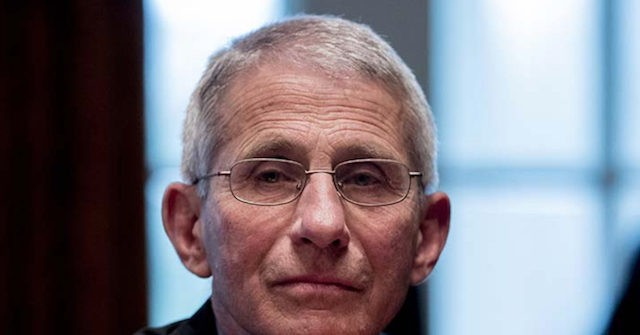 Fauci: U.S. Starting to be Able to Possibly 'Flatten Out' Coronavirus Curve